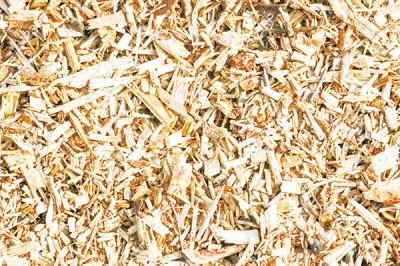 Wood Chip Drying  Through Mobile Rotary Dryer